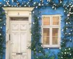 Ngây ngất với những ngôi nhà có khung cửa rực rỡ hoa lá