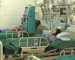 Vụ 3 người trong gia đình tử vong sau bữa ăn: Nấm có chất kịch độc