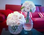 'Ngôi nhà hoa hồng' tuyệt đẹp khiến ai cũng phải xiêu lòng của bà mẹ Việt ở Úc