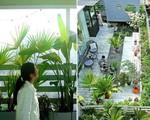 Choáng ngợp 'vườn hoa gác mái' hơn 500 loài của cặp vợ chồng trẻ, ai cũng phải xuýt xoa