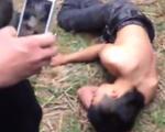 """Bộ VHTT&DL lên tiếng vụ nam thanh niên ngã bất tỉnh khi trèo cây chuối """"lấy lộc"""""""