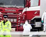 Thủ tướng chỉ đạo xác minh thông tin về vụ 39 người chết trong xe đông lạnh ở Anh