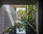 'Rừng cây nhiệt đới' trong lòng ngôi nhà ở Đà Nẵng