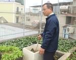 Vườn rau 80 m2 giữa lòng thành phố của thầy giáo Hà Nội