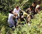 Những pha đỡ đẻ rơi 'có một không hai' chỉ có ở vùng cao Việt Nam