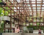 Công trình 'vườn - ao - chuồng' kiểu phố thị ở Hà Đông lên báo nước ngoài
