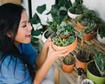 Nhặt nhạnh hoa bị bỏ đi về trồng lại, Phương Vy Idol biến ban công nhà mình thành khu vườn đẹp như quán cà phê