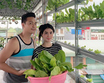 Sân thượng bốn bề là rau xanh của vợ chồng diễn viên Kha Ly