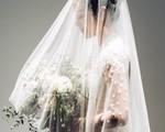 Khoe ảnh cưới lộng lẫy, Bảo Thanh, Thu Quỳnh và nhiều sao Việt đồng loạt chúc mừng MC Phí Linh