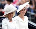 Bà Camilla bức xúc với con dâu cả nhưng cũng đành chịu thua bởi Công nương Kate quá 'tỉnh'