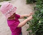Những kỹ năng cần thiết để trẻ có kỳ nghỉ ở quê thú vị
