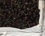 Thương chiến kéo tụt giá cherry: Hàng Mỹ hay đồ Trung Quốc?