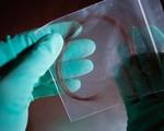 Xét nghiệm ADN nhận con mới phát hiện mình bị vô sinh