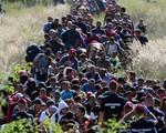 Lý do khiến người nhập cư trái phép bất chấp những rủi ro, vẫn đánh cược tính mạng mình quyết đi đến tận cùng cuộc hành trình tử thần