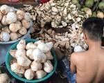 Cận Tết, nhiều bà nội trợ Việt mua cùi dừa non 70 ngàn đồng/kg làm mứt, tiểu thương ngày bán cả tạ