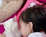 Học theo trò chơi 'treo cổ' trên Youtube, bé gái 5 tuổi ở TP.HCM tử vong thương tâm