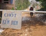 Hà Nội: Tiêu hủy hơn 6.000 con ngan, vịt mắc cúm gia cầm A/H5N6