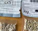 Mỹ cảnh báo người dân về hạt giống bí ẩn được gửi từ Trung Quốc