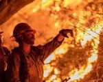 Tổng thống Trump gây sốc với tuyên bố cây nổ tạo ra cháy rừng