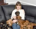 Kỳ lạ cặp vợ chồng nuôi 14 chú chó vì không thích có con