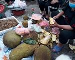 Mít mật, mít dai ruột vàng ruộm, múi dày, ngọt giá 25-30 ngàn đồng/kg bán khắp chợ dân sinh Hà Nội