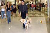 Giả mù để kiếm hơn 300.000 euro tiền thương tật