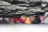 Thót tim giải cứu bé gái 4 tuổi mắc kẹt trong tường