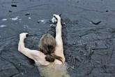 Dũng cảm lao xuống hồ băng để cứu chú vịt