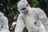 WHO: Số ca nhiễm virus Ebola đã vượt quá 10.000 người