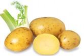 Giảm cân ngoạn mục nhờ khoai tây