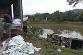 Xe tải lật nhào xuống ruộng, người dân giúp tài xế nhặt hàng
