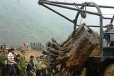 """Quảng Bình """"tắm"""" cho gốc gỗ Huê 17 tỷ"""