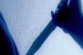 Thiếu nữ 17 tuổi giết bà và mẹ ngay tại nhà