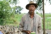 Lê Bình: 'Sau ly hôn, tôi như chim sợ cành cong'