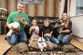 """Bố mẹ và 2 con cùng """"cuồng"""" thú cưng, nuôi 150 động vật trong nhà"""