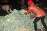 Tiểu thương lách luật mang rau bẩn vào thị trường