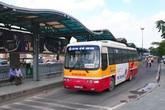 Thỏ đi xe buýt!