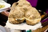Cận cảnh cây nấm trắng 1 kg có giá gần 7 tỷ đồng