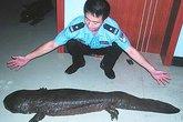 Ăn thịt kỳ giông, 14 người bị điều tra