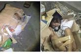 Câu chuyện phẫn nộ phía sau bức ảnh đứa bé bị trói và nhét vào thùng các-tông