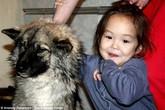 Cảm động các em bé sống sót nhờ được động vật cứu trong gang tấc