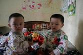 Gặp lại 2 bé sinh ra từ tinh trùng của người bố đã mất ở Hà Nội