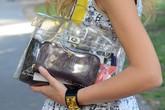 Sao Việt sành điệu với mốt túi nhựa