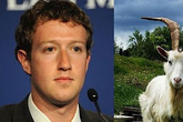 Những sở thích kỳ lạ của các doanh nhân nổi tiếng