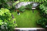 Mướt mắt ngôi nhà phủ đầy cây xanh của nghệ sĩ nổi tiếng ở trung tâm Hà Nội