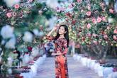 Sao Việt dịu dàng sắc xuân