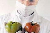 Quả cà chua Trung Quốc khiến bà nội trợ rụng rời