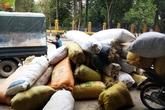 Người dân đổ xô đi thu gom rêu đá bán cho thương lái Trung Quốc với giá cao