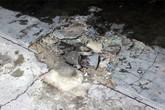 Nghi án nổ mìn sát hại 6 người trong quán cà phê