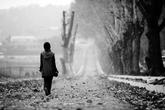 Thâm cung bí sử (71 - 7): Tột cùng sự mất mát